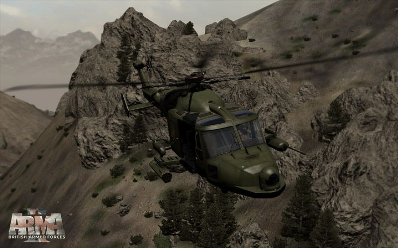 Illustration de l'article sur ArmA 2 : Reinforcements