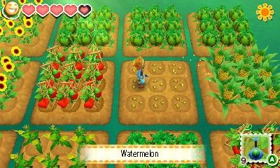 Illustration de l'article sur Story of Seasons